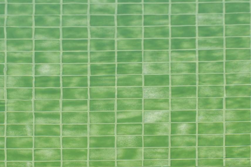 gresite verde 856x570 Piscina color verde en plena naturaleza.
